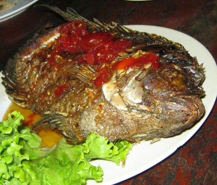 Ryby v dětském jídelníčku